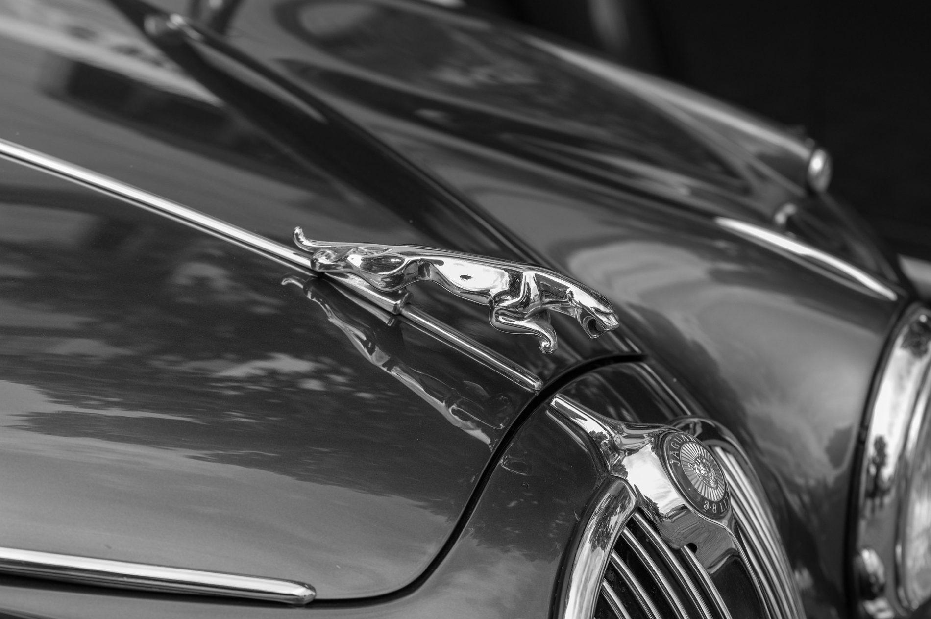 ¿Qué significa el logo de Jaguar?